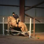 Moorlands Equestrian Centre